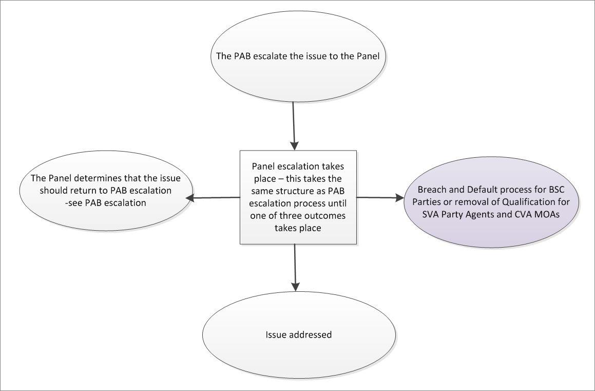 Process diagram for Error and Failure: Panel Escalation Process